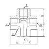 英锥管内螺纹接头 ZT-02,ZT-04,ZT-06,ZT-08,ZT-12,ZT-16,ZT-20,ZT-24,ZT-32,