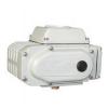 DCL-05,DCL-10,DCL-20,DCL-40,DCL-60,DCL-100,DCL-200,电动执行器